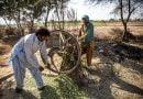 Kampi i skllevërve të borxheve, në botë ka 45 milionë njerëz të tillë (FOTO)