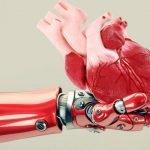 Robotët tani rrisin organe njerëzore