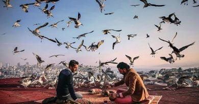 Fotoreporterja e AA-së fiton çmim ndërkombëtar