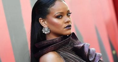Pas 3 vitesh lidhje, Rihanna ndahet nga i dashuri biznesmen