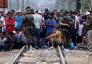"""Janë gjetur 43 emigrantë në një automjet mallrash tek unaza """"Përdejcë"""""""