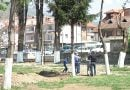 Revitalizohet parku i Xhamisë së Pashës