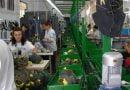 Mungesa e fuqisë punëtore të kualifikuar në industrinë përpunuese