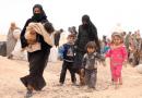 AP: Janë vërejtur raste të mbajtjes së personave minoren në Qendrën e pranimit për të huaj në Gazi Babë