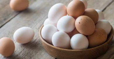 Pesë mite të pavërteta rreth vezëve