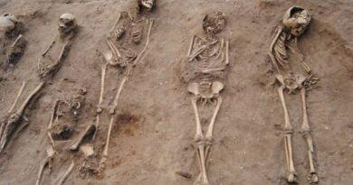 Në veri të Gjermanisë zbulohen 100 skelete mesjetare