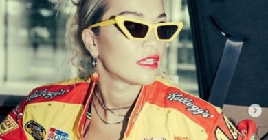 Rita Ora falënderon Korenë për koncertin madhështor (FOTO)
